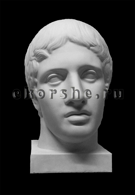 Голова Дорифора
