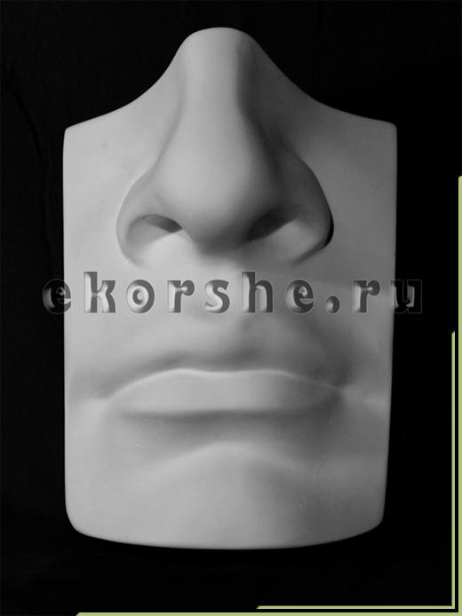 Нос с губами Давида