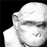 Бюст шимпанзе