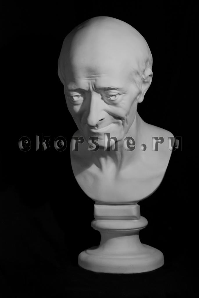 Голова Вольтера